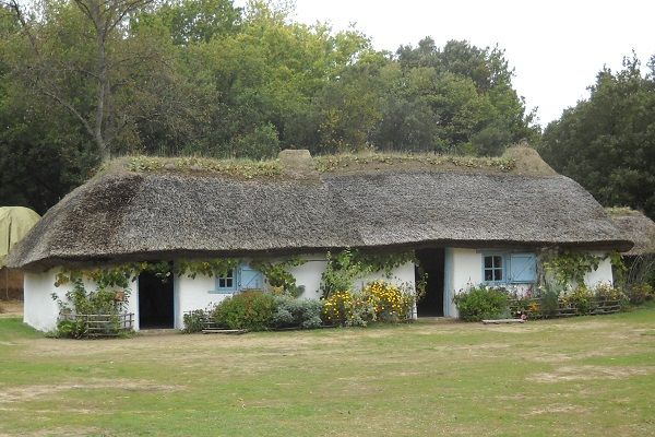 Bourrine du bois Juquaud # Maison En Bois Vendée