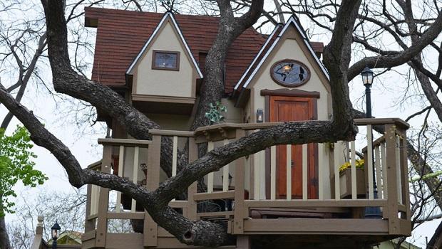 incroyable cabane dans un arbre