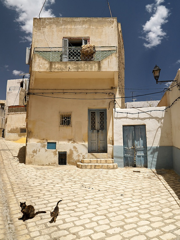 Les maisons en tunisie for Architecture tunisienne maison