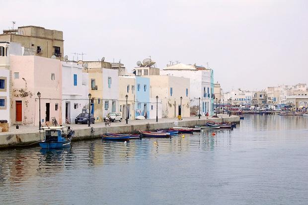 maisons en tunisie
