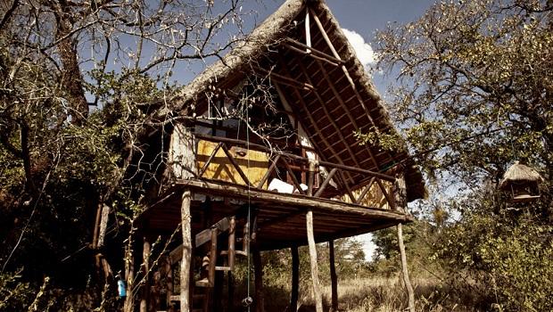 cabane arbre kenya