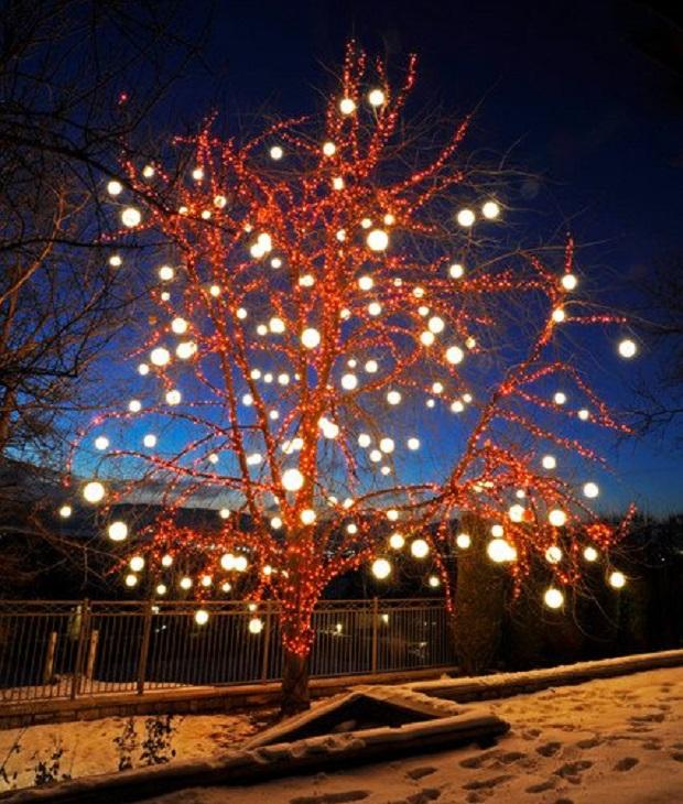 idées lumières noel jardin (2)