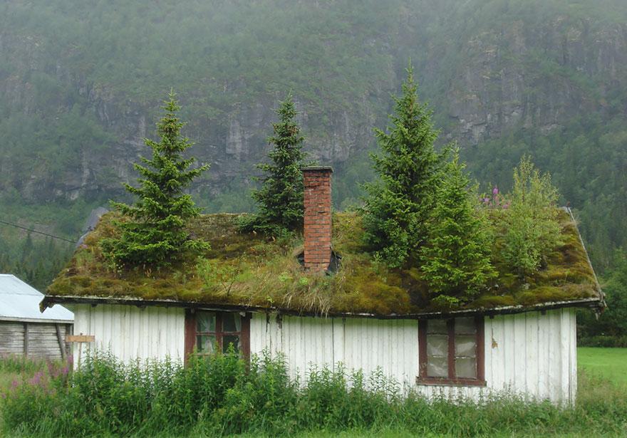 architecture fée norvège 10