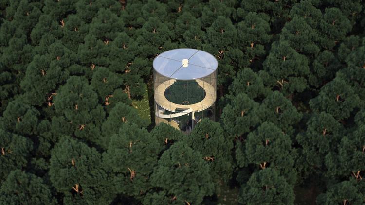 maison arbre centre (2)