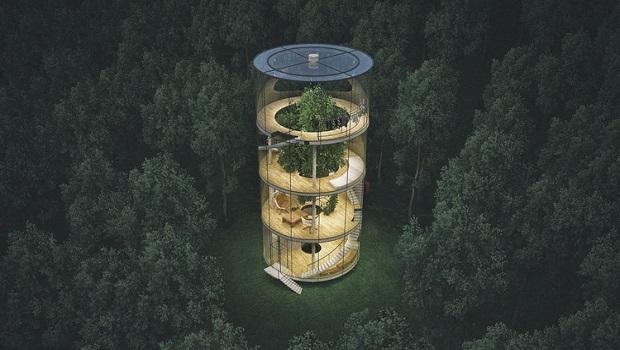 maison arbre centre (5)