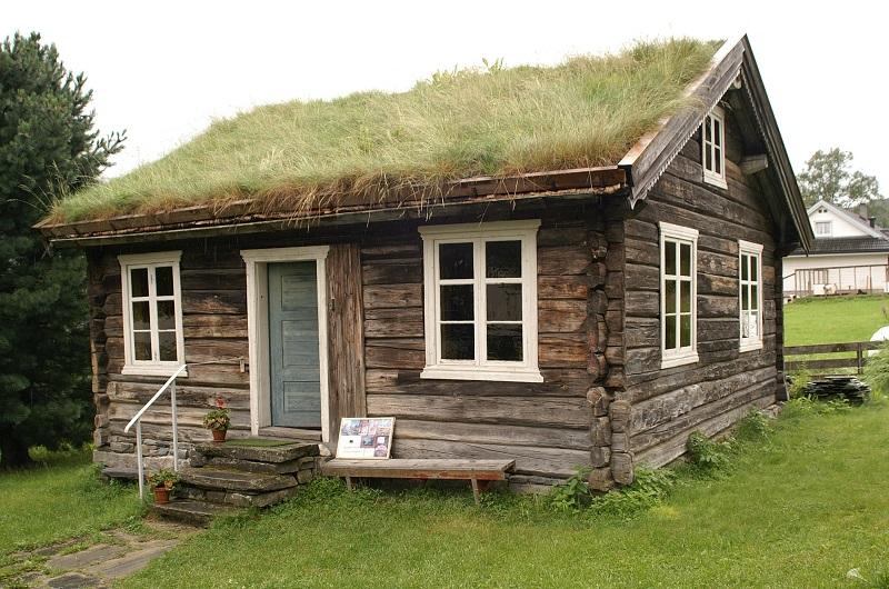 maison gazon islande