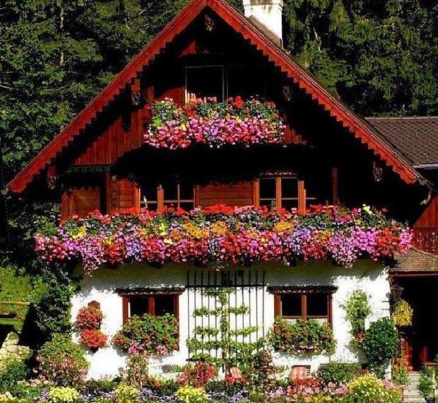 chalet suisse la beaut simple du bois. Black Bedroom Furniture Sets. Home Design Ideas