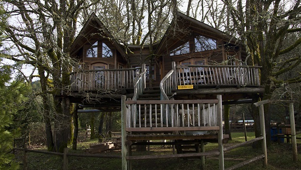 10 hôtels dans les arbres incroyables