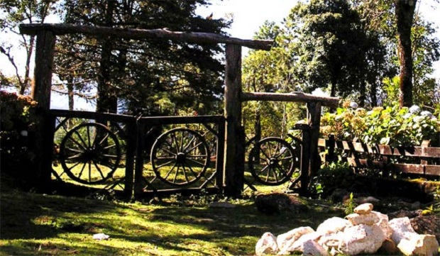 portail jardin 7