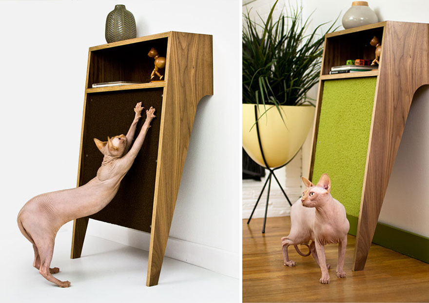 grattoir meuble chat