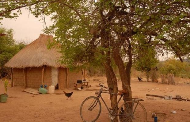 hutte zambie 1