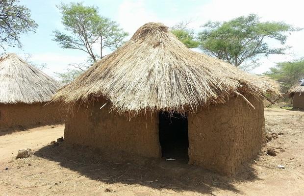 hutte zambie 2