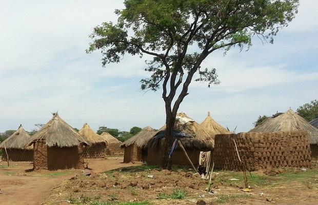 hutte zambie 3