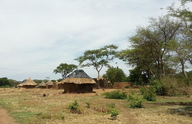 hutte zambie 4