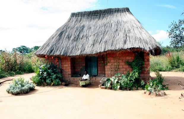 hutte zambie 5