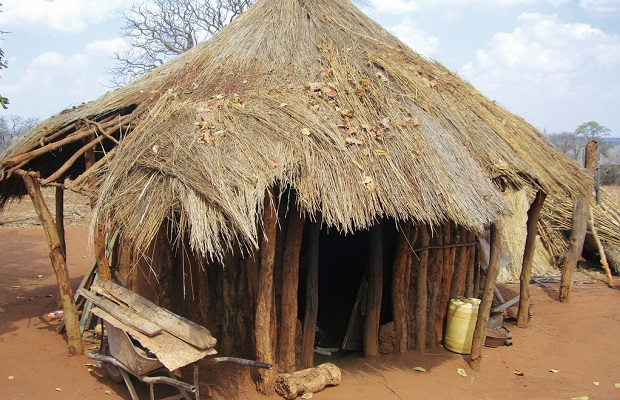 hutte zambie 6