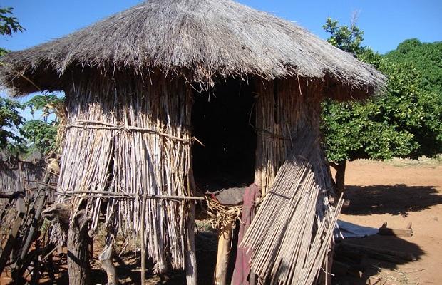 hutte zambie 8
