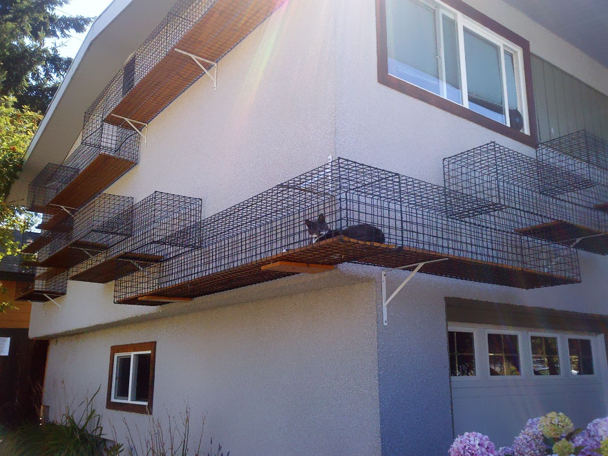 25 superbes id es de meubles design pour les amoureux des chats. Black Bedroom Furniture Sets. Home Design Ideas