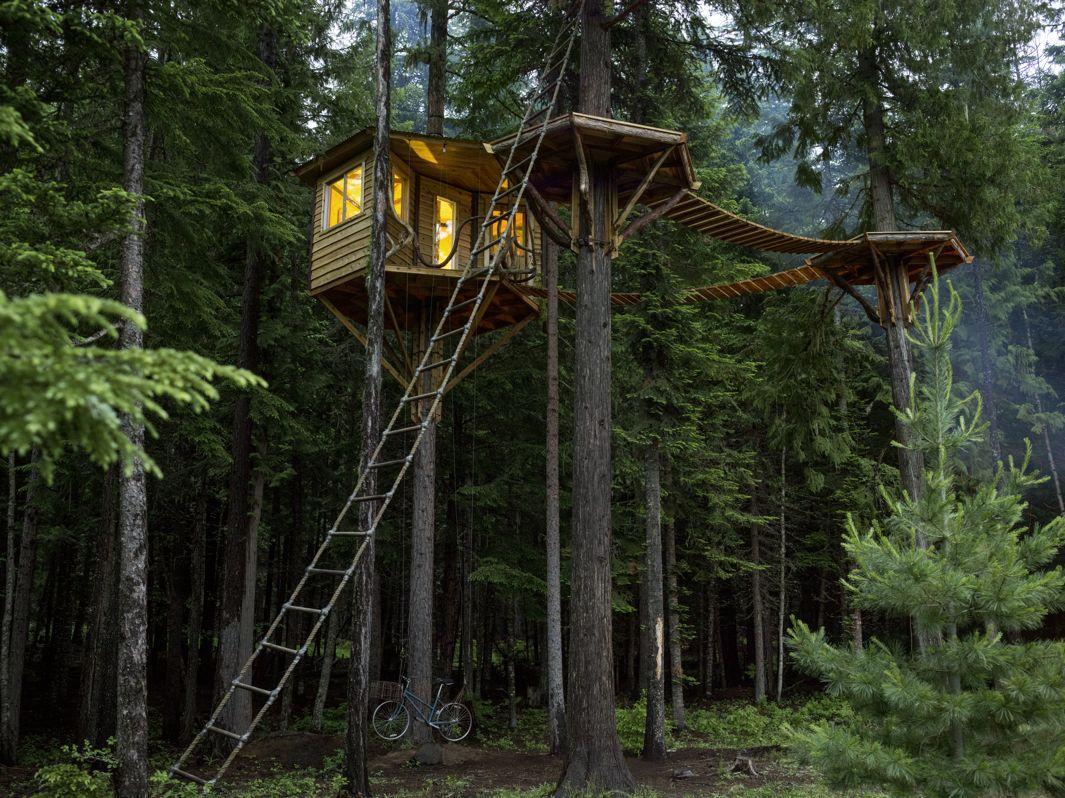 cabane arbre ethan (1)