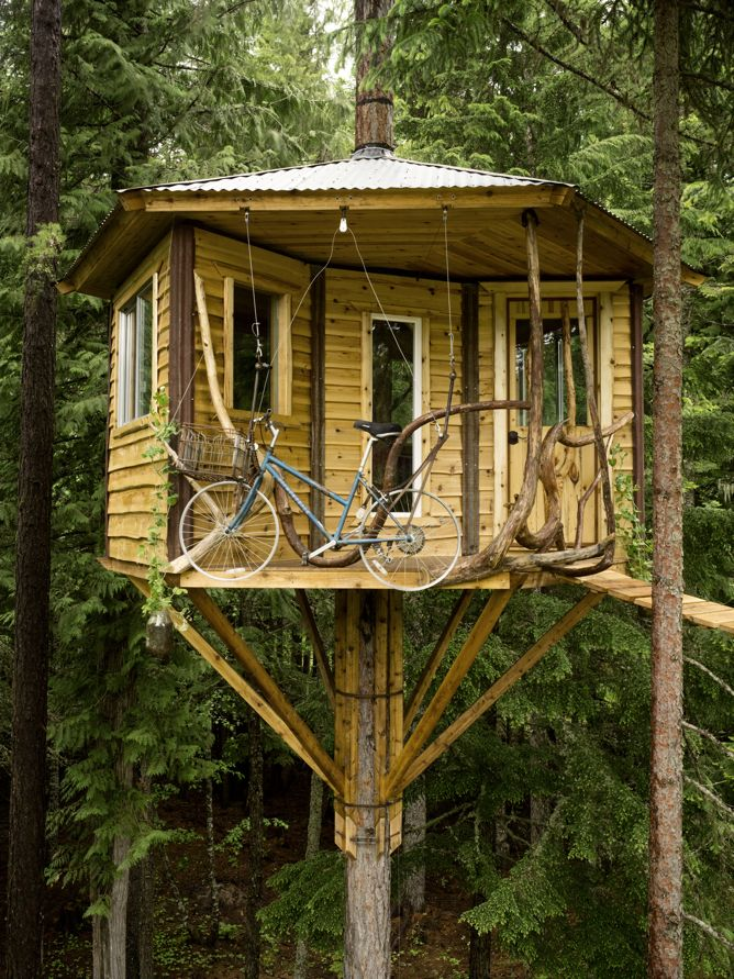 cabane arbre ethan (3)