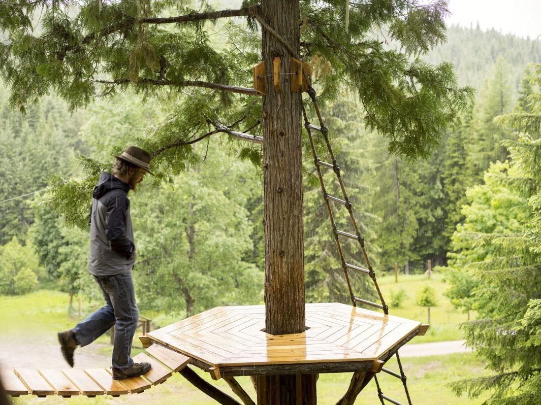 cabane arbre ethan (4)