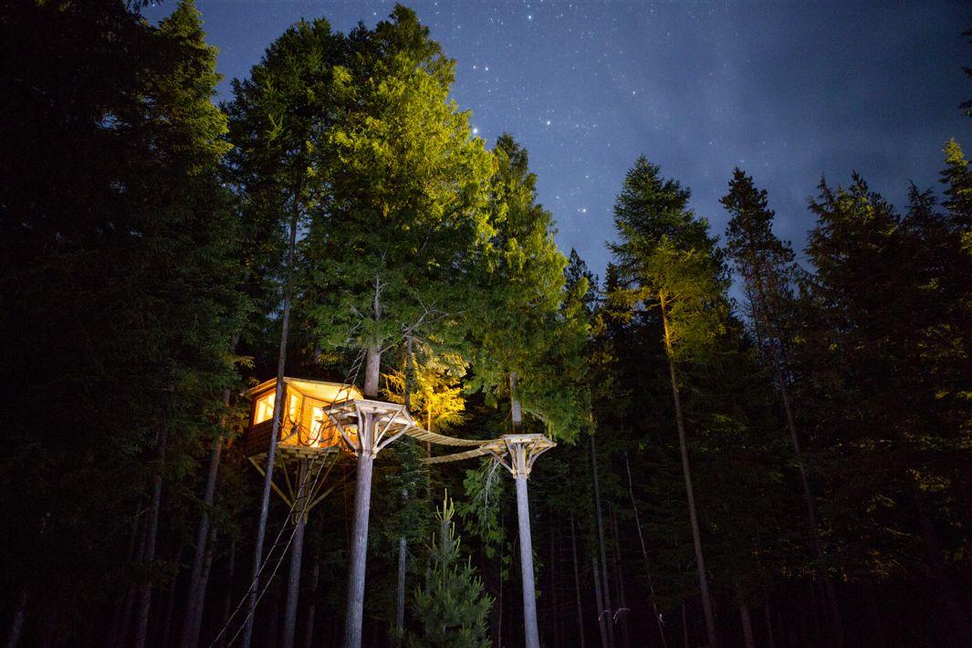 cabane arbre ethan (7)