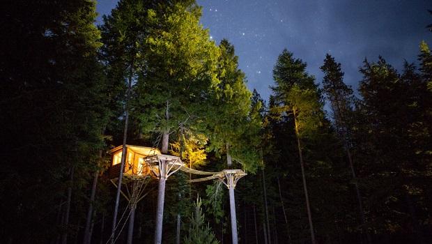 Cette magnifique cabane dans un arbre est un rêve d'enfance devenu réalité