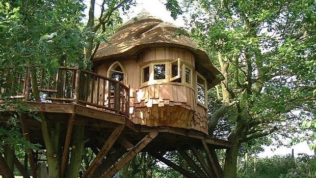 Les incroyables cabanes de Blue Forest