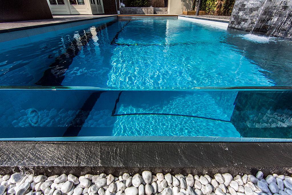 jardin avec piscine en verre (14)