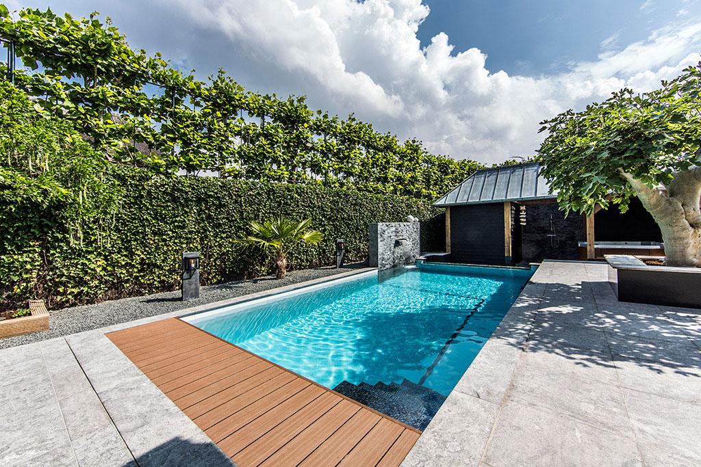jardin avec piscine en verre (4)