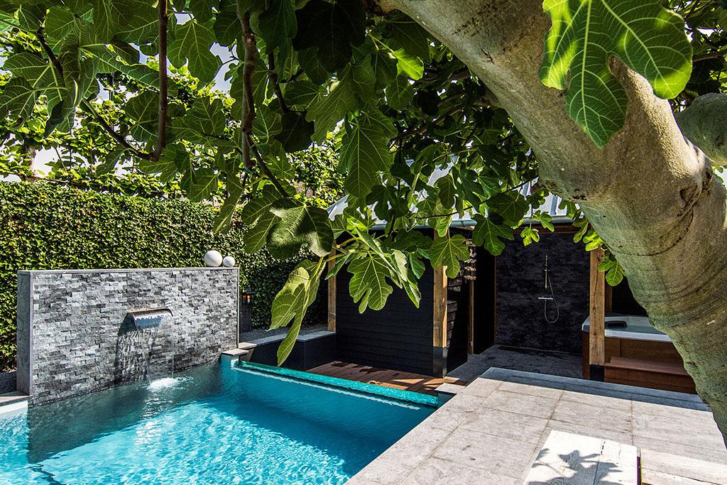 jardin avec piscine en verre (5)