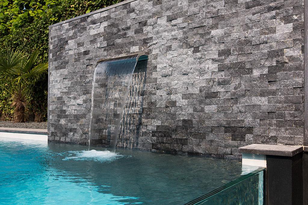jardin avec piscine en verre (6)