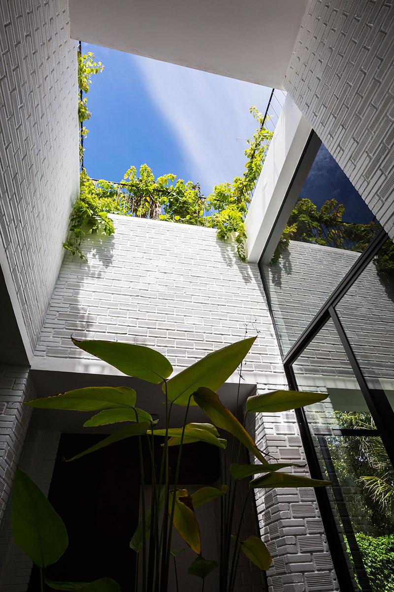 jardin terrasse toit maison 3