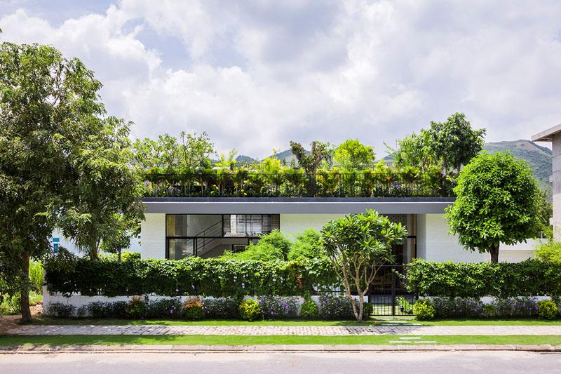 jardin terrasse toit maison 6
