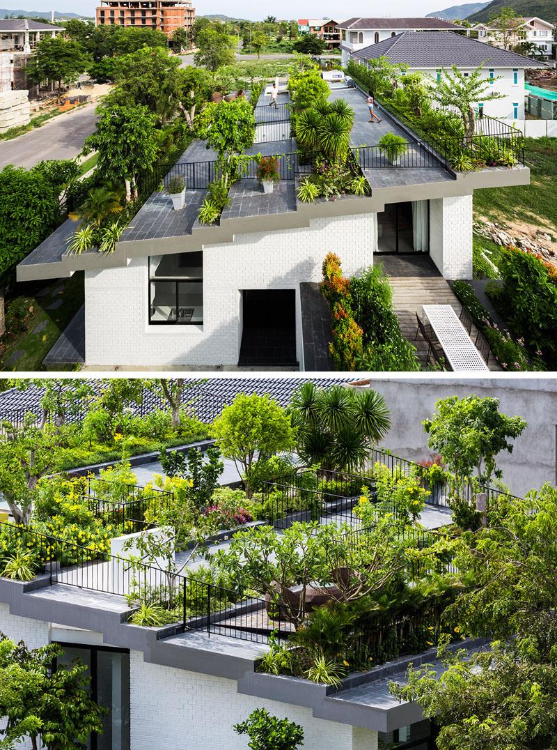 jardin terrasse toit maison