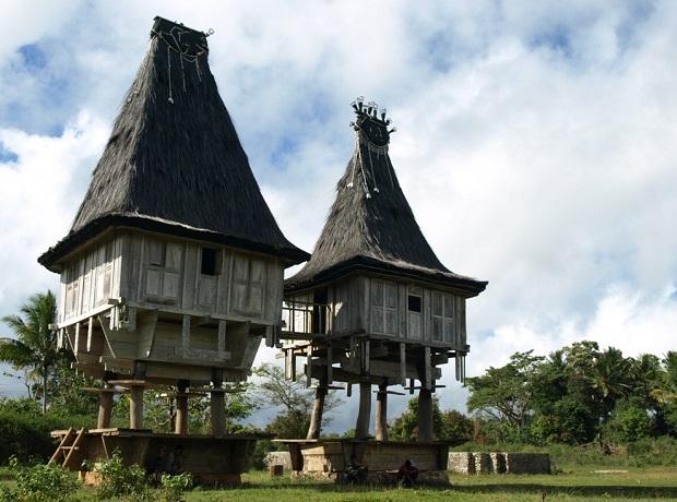 maison timor