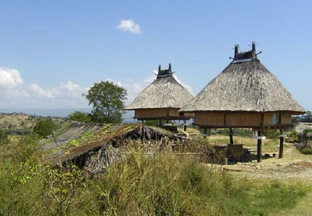 maison timor 2