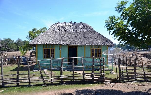 maison timor 3