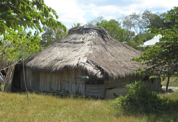 maison timor 4
