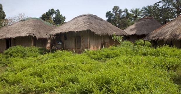 maison guinée bissau