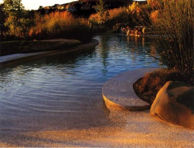 piscine naturelle (12)