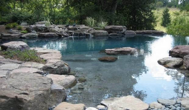 piscine naturelle (13)
