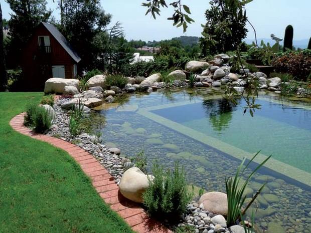 piscine naturelle (14)