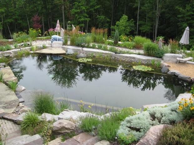 piscine naturelle (16)