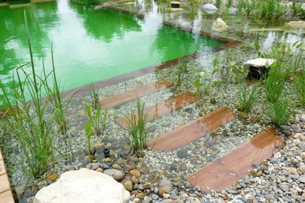 piscine naturelle (17)