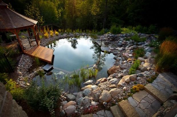 piscine naturelle (3)