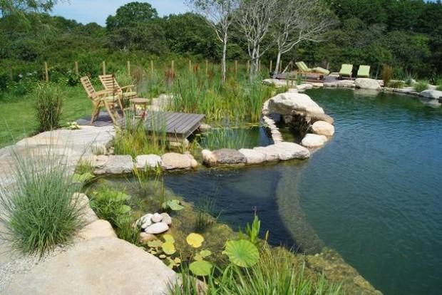 piscine naturelle (4)