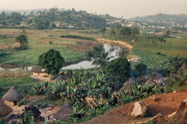 hutte guinée 3