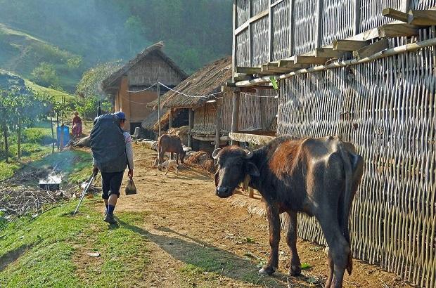 maison-bambou-nepal-2