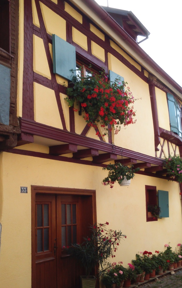maison-colombages-eguisheim-1